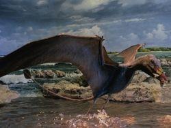 Ученые взвесили птерозавров