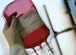 Кровные братья: как стать донором крови?