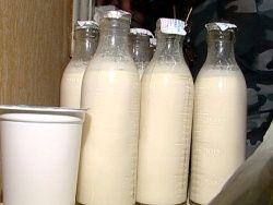 В Липецкой области дети отравились продукцией молочной кухни