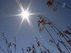 Экстремальная жара прошлого лета может повториться
