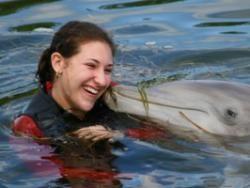 Дельфины и люди нашли общий язык