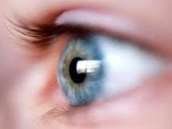 Ученые научились возвращать зрение