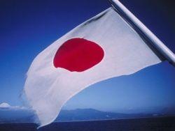 Лечение облученных японцев доверили иностранным врачам