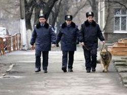Украинских милиционеров хотят переименовать в полицейских