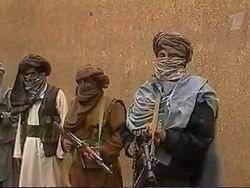 Талибы присоединились к массовым беспорядкам