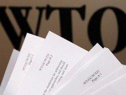 Россия и ВТО: зачем им нас принимать?