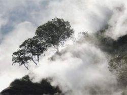 70 лет назад была открыта Долина гейзеров