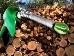 Использование биотоплива могут признать неэтичным