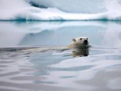 Пресное озеро в Ледовитом океане может изменить климат Европы