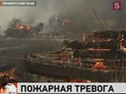 В некоторых регионах РФ уже вовсю бушуют лесные пожары