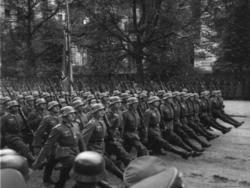О причинах поражений Красной Армии в начале войны