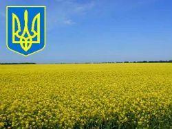 "На Майдане ""сплясали"" очередной конфликт"