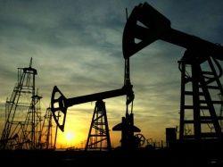 Нефтяникам разрешили добывать нефть и газ в заповедниках