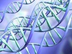 Ученые выявили ген женского бесплодия