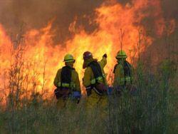 США: аризона в огне
