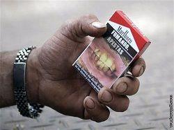 Страх перед курением объединил детей 43 стран мира