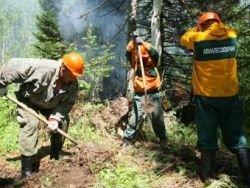 Дело у пожаров не выгорело: не хватает добровольцев