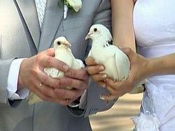 В День семьи любви и верности наблюдается свадебный бум