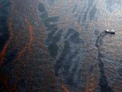 BP назвала компенсации за разлив нефти чрезмерными