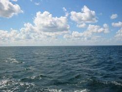 В Крыму ищут пропавшего в море нигерийца
