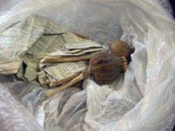 В Узбекистане наркоконтрабандисты вступили в перестрелку