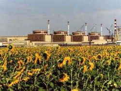 Запущен отключившийся из-за грозы энергоблок Балаковской АЭС