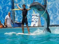 Дельфинарии: место радости или хлорированный концлагерь?