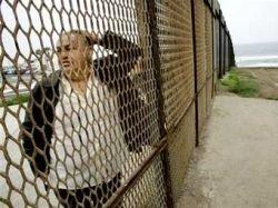 Мексика предложила США защитить свою границу кактусами