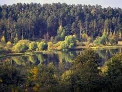 Потерявшиеся в Свердловской области девочки найдены
