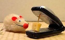 Почему мы должны избавиться от мобильников