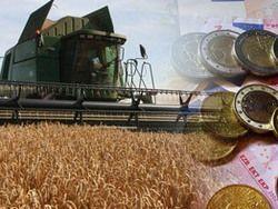 Украина хочет создать зерновой пул со странами ТС