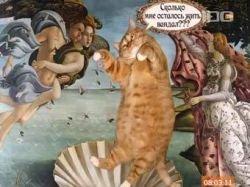 В Петербурге кот-искусствовед поборется с уличными вандалами