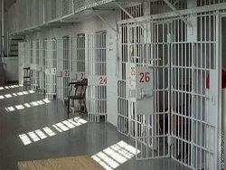 Жертва интернет-мошенничества получила 5 дней тюрьмы
