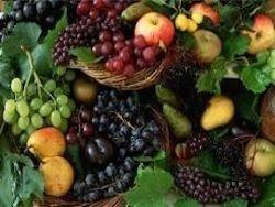 В России не хватает собственных фруктов и ягод
