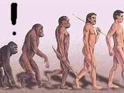 Опровержение эволюции
