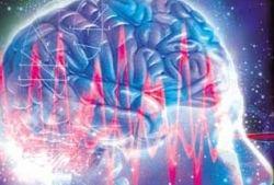 Лучше всего мозг анализирует в тишине