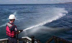 Средства для удаления нефти смертельно опасны для кораллов