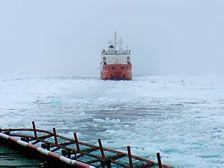 Экспедиция к Северному полюсу вернется в Мурманск не раньше 10 августа