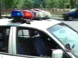 В США полицейский, охотясь за змеей, убил 5-летнего ребенка