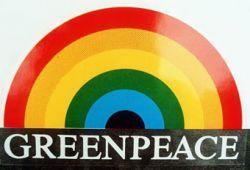 Greenpeace назвал самую грязную реку Петербурга