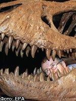 Эпоха гигантов: ученые выясняют, почему древние животные обладали исполинским ростом