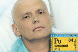 Литвиненко сам заразил Лугового полонием?