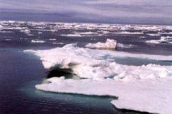 Война за Арктику: есть ли вероятность военного столкновения?