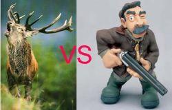 Вожак оленей сумел защитить свое стадо от охотника (видео)