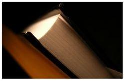 Убийца описал свое преступление в романе