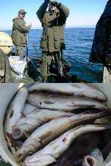 В Охотском море задержали браконьеров