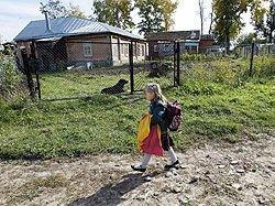 Ликвидация сельских школ приняла в стране массовый характер
