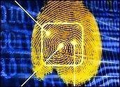 Рынок полупроводниковых сканеров отпечатков пальцев: тенденции роста