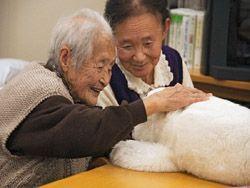 В Японии бум долгожительства