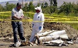 В Грузии отрицают «режиссирование» падения ракеты